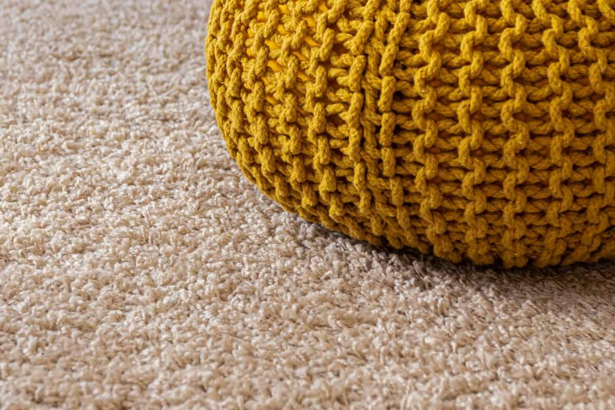 Best Vacuum Cleaner for Human Hair on Carpet